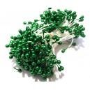 (10 buc.) Stamine verde padure perlat 3-4mm