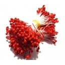 (10 buc.) Stamine rosii perlate 3-4mm