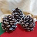DISPONIBIL 3 BUCATI - Conuri de brad glitter argintiu 8-10cm - STOC LIMITAT!!!