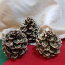 DISPONIBIL 4 BUCATI - Conuri de brad glitter auriu 8-12cm - STOC LIMITAT!!!