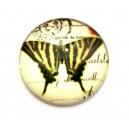 CSP20mm-A- - Cabochon sticla print fluturi 20mm - STOC FOARTE LIMITAT!!!