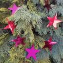 Ghirlanda stelute rosii 200cm