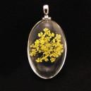 PFU-C-10 - Pandantiv flori uscate oval 37*20mm