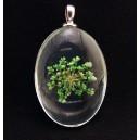 PFU-D-01 - Pandantiv flori uscate oval 42*25mm