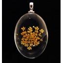 PFU-D-09 - Pandantiv flori uscate oval 42*25mm