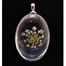PFU-D-11 - Pandantiv flori uscate oval 42*25mm