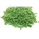 MN2mm-08 - (25 grame) Margele nisip verde pal irizat 2mm