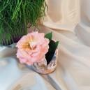 UNICAT - XCER59A - Vas cu capac ceramica nuante pastelate 10*10cm